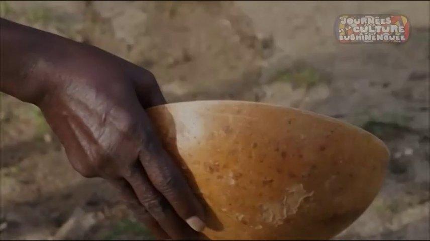 Les journées de la culture Bushinenguée